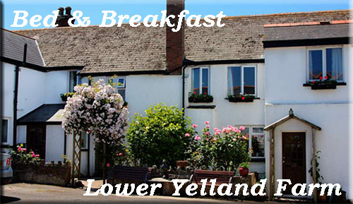 Lower Yelland Farm Bed & Breakfast